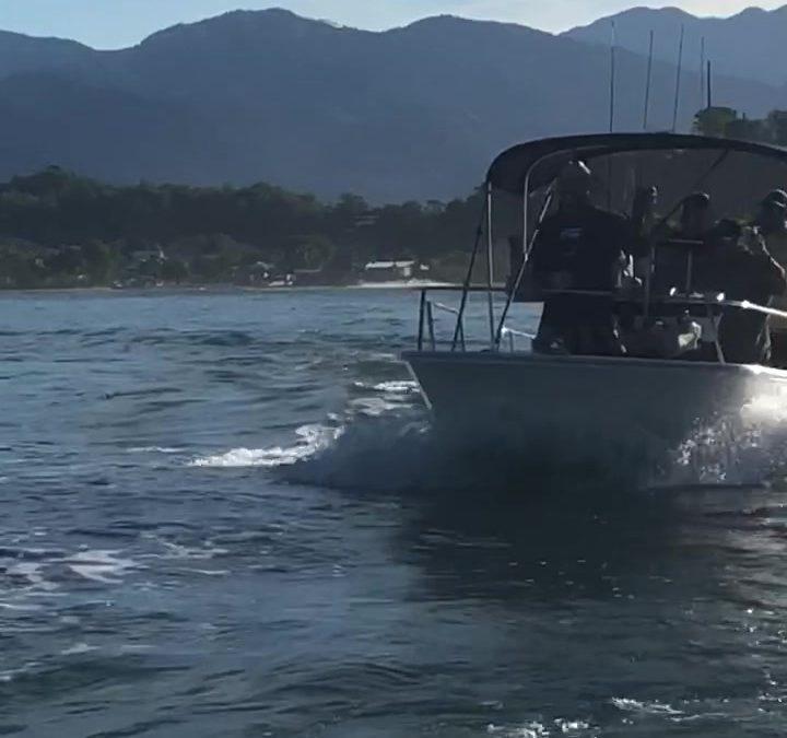 Salida Marina Pez Vela